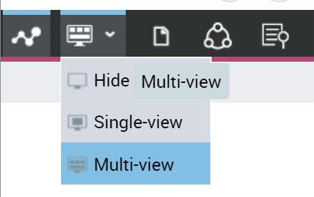 Multi-view.png