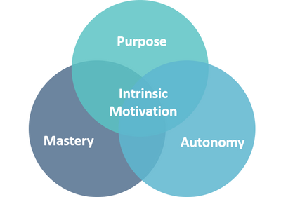 Figure 1- Dan Pink's trilogy on purpose driven autonomy