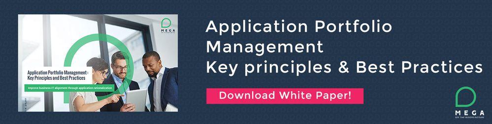 Download White Paper Application Portfolio Management.jpg
