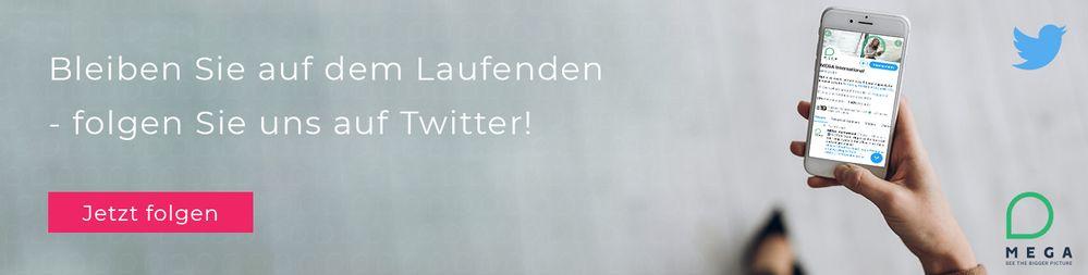 Follow Us on Twitter DE.jpg