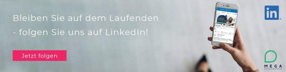 Follow Us on LinkedIn DE.jpg